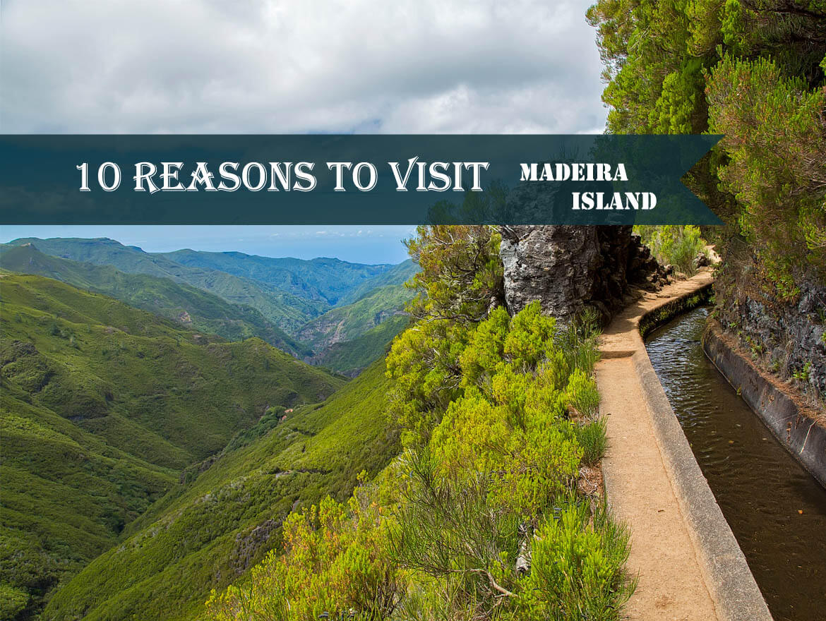 10 Reasons to Visit Madeira Island