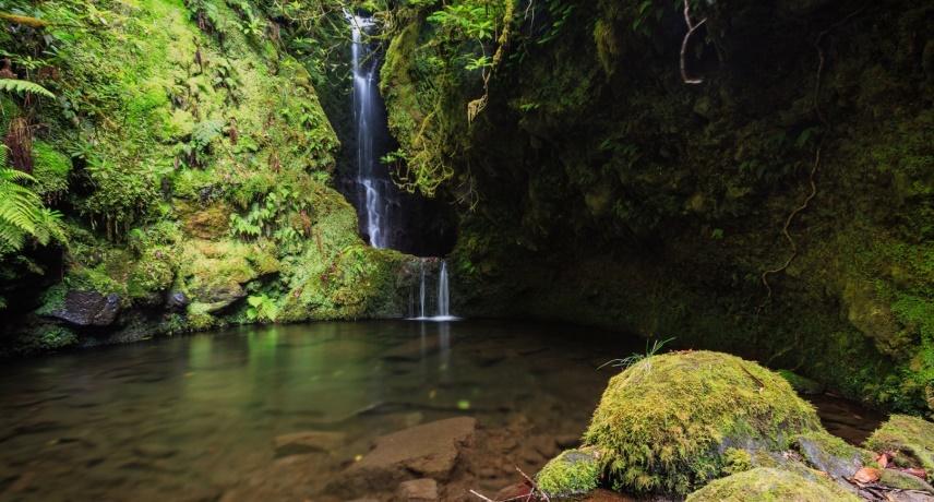 Топ 10 мест для плавания на острове Мадейра