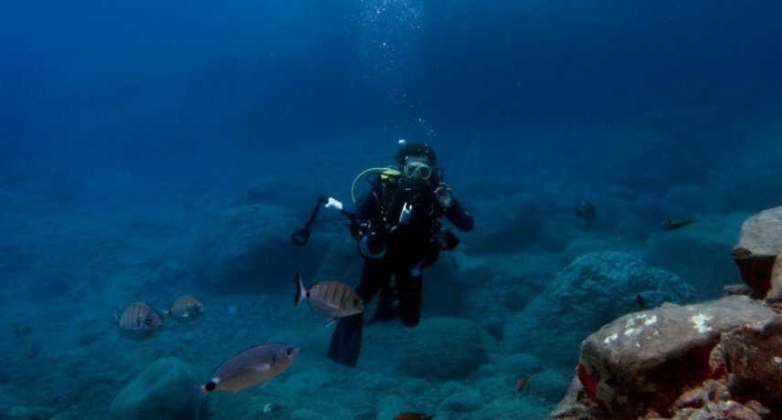 7. scuba diving in madeira island